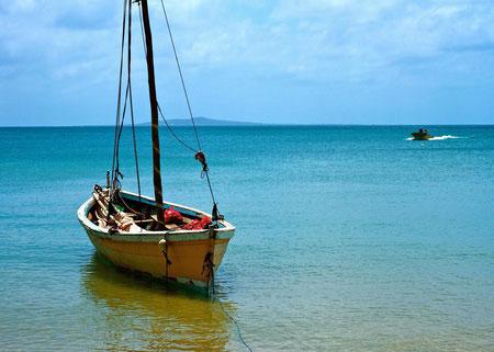 南の海帆をたたんだヨット